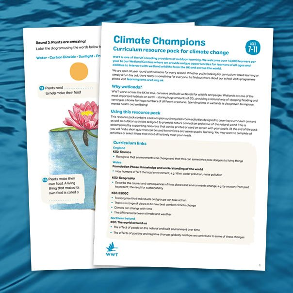 resource_pack_thumb_climate_champions_604x604